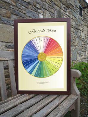 Poster 007 - Mandala Florais de Bach