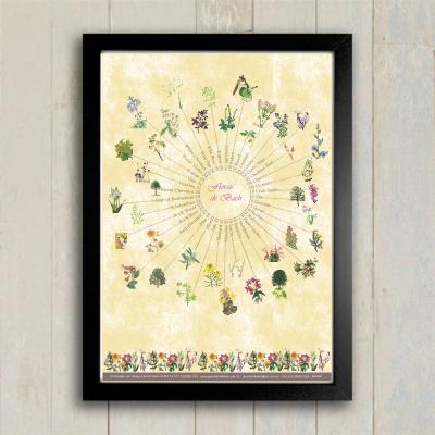 Poster 008 - Florais de Bach