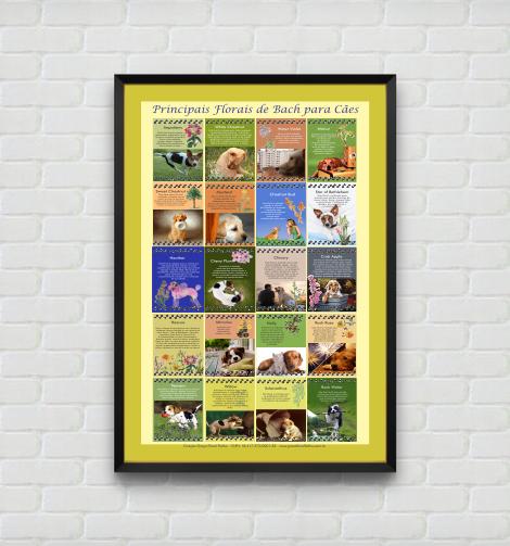 Poster 010 - Principais Florais de Bach para Cães