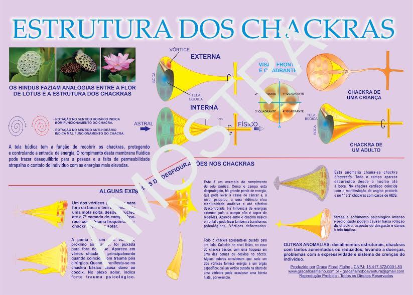 Poster Estrutura dos Chacras