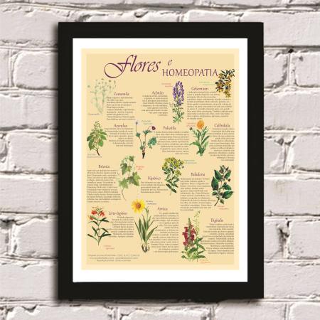 Poster Flores e Homeopatia