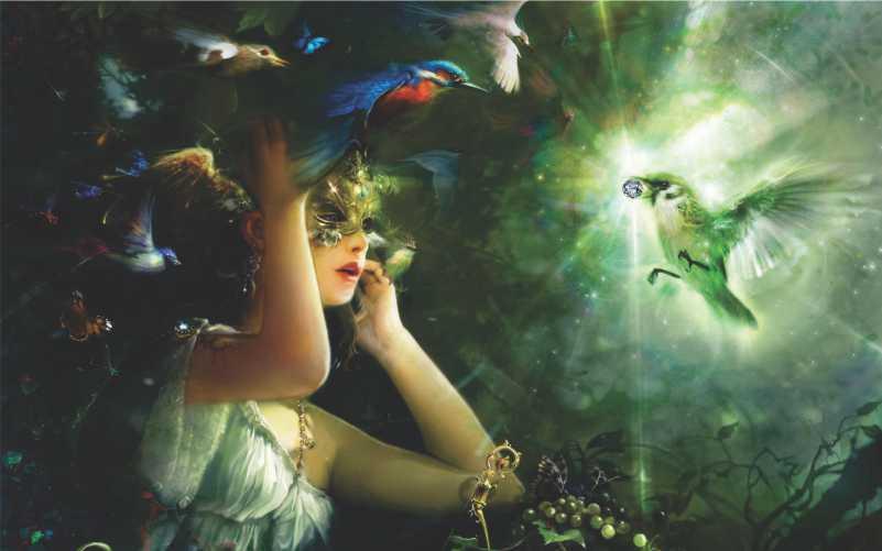 """Poster ilustração """"Presente da Natureza"""""""