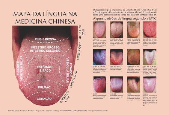 Poster Mapa da Língua - MTC