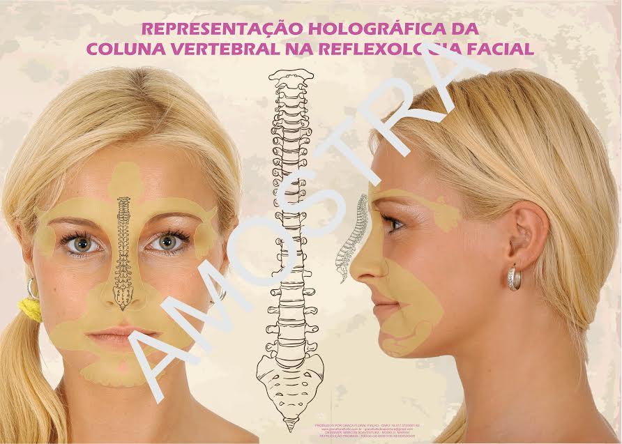 Poster/Mapa - Representação holográfica da coluna vertebral pela Reflexologia Facial