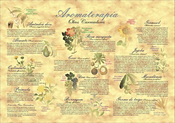 Poster Aromaterapia - Óleos Carreadores