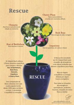 Poster RESCUE - Florais de Bach