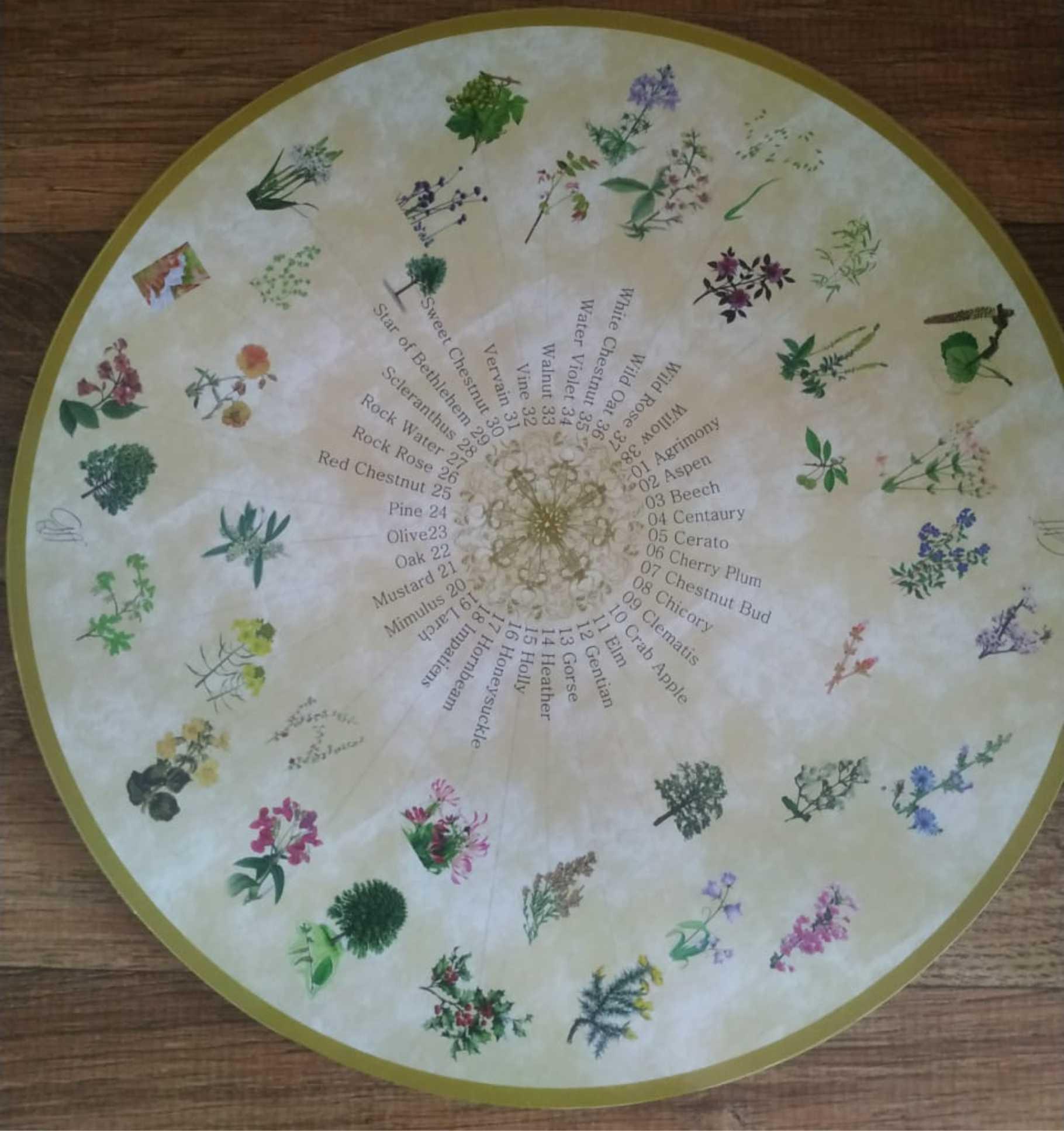 Tábua de Florais de Bach - 38 Essências