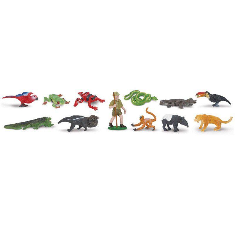 Animais da Floresta Tropical