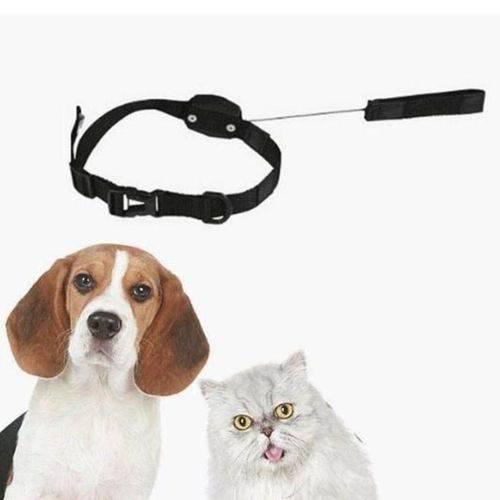 Coleira com guia 2 em 1 retrátil magnética 1,20m para cão e gato