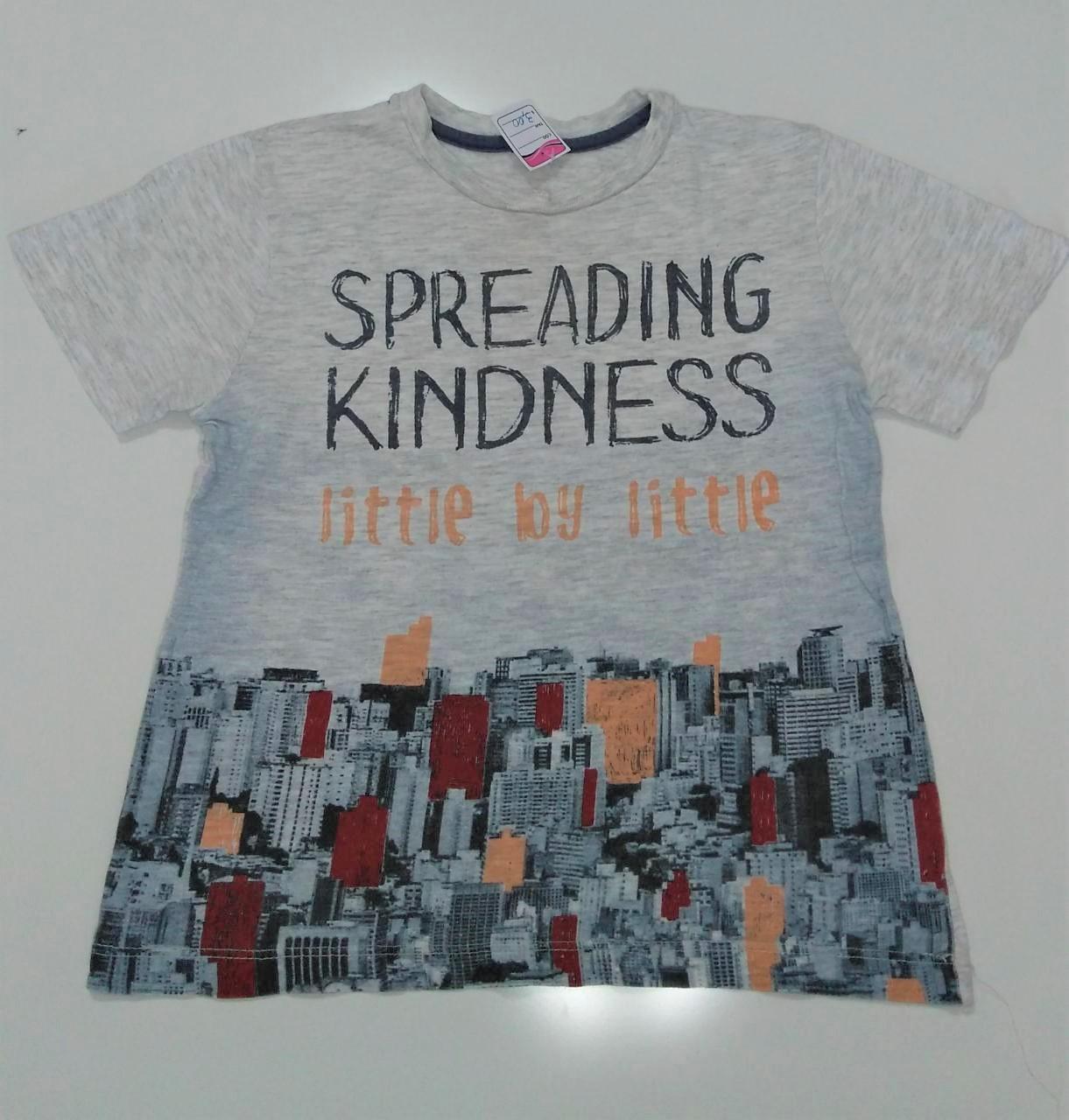 Camiseta infantil - menino - tamanho 4