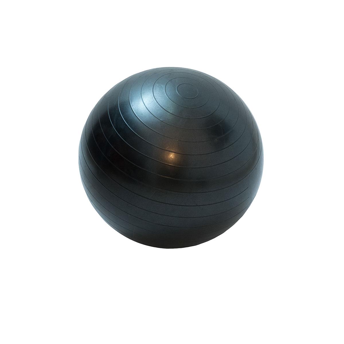 Bola de Ginástica e Pilates 55cm Wellness