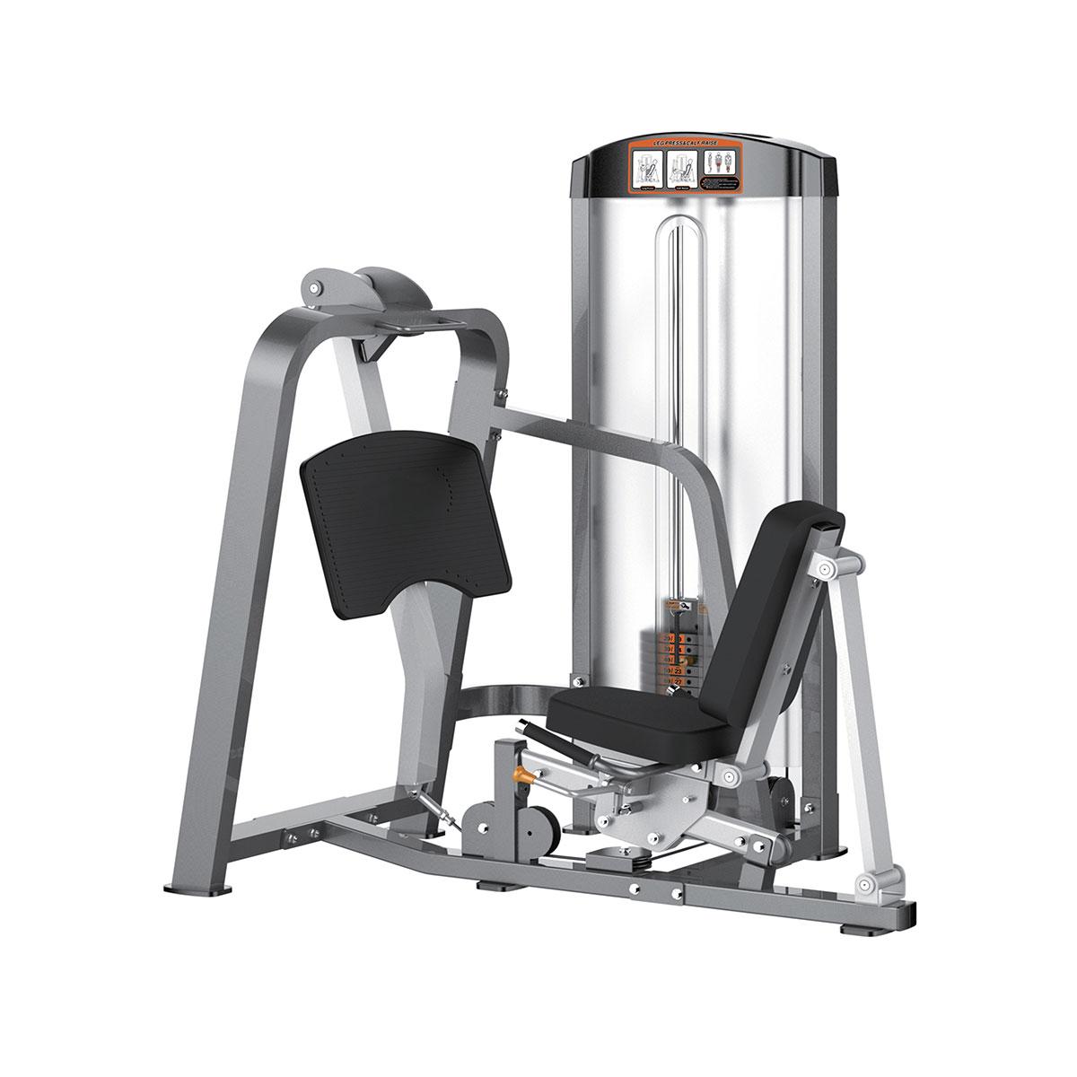 Leg Press / Calf Raise - 250 lbs