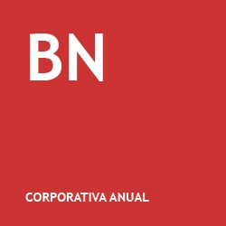 Borracha Natural Corporativa Anual