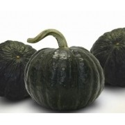 Semente Abóbora Híbrida Tetsukabuto Takayama (Topseed Premium) - 300 gramas