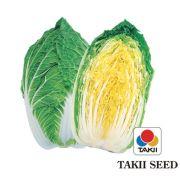 Semente Couve Chinesa Híbrida Kigokoro 65 (Takii Seed) - 10 gramas