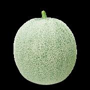 Semente Melão Híbrido Cantamericano 0085 (Blueseeds) - 1.000 sementes