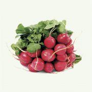 Semente Rabanete Híbrido Nº 19 (Sakata) - 100 gramas
