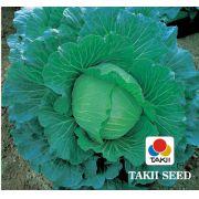 Semente Repolho Híbrido Musashi (Takii Seed) - 2.500 sementes