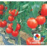 Semente Tomate Híbrido Grandeur (Takii Seed) - 5 gramas