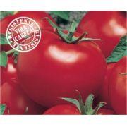 Semente Tomate Híbrido Itaipava (Topseed Premium) - 1.000 sementes