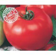 Semente Tomate Híbrido Serato (Topseed Premium) - 1.000 sementes