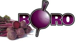 Semente Beterraba Híbrida Boro (Bejo) - 25.000 sementes