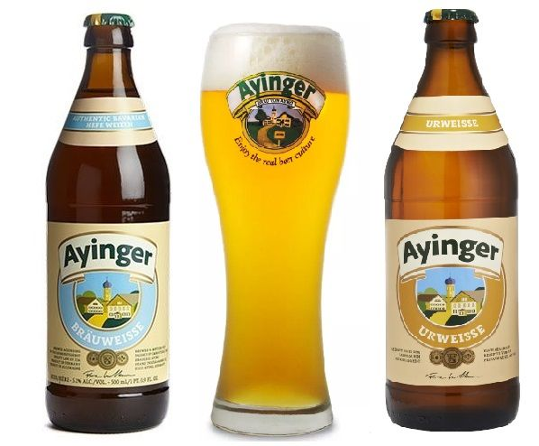 Combo Ayinger Urweisse 500ml e Brauweisse500ml + Copo
