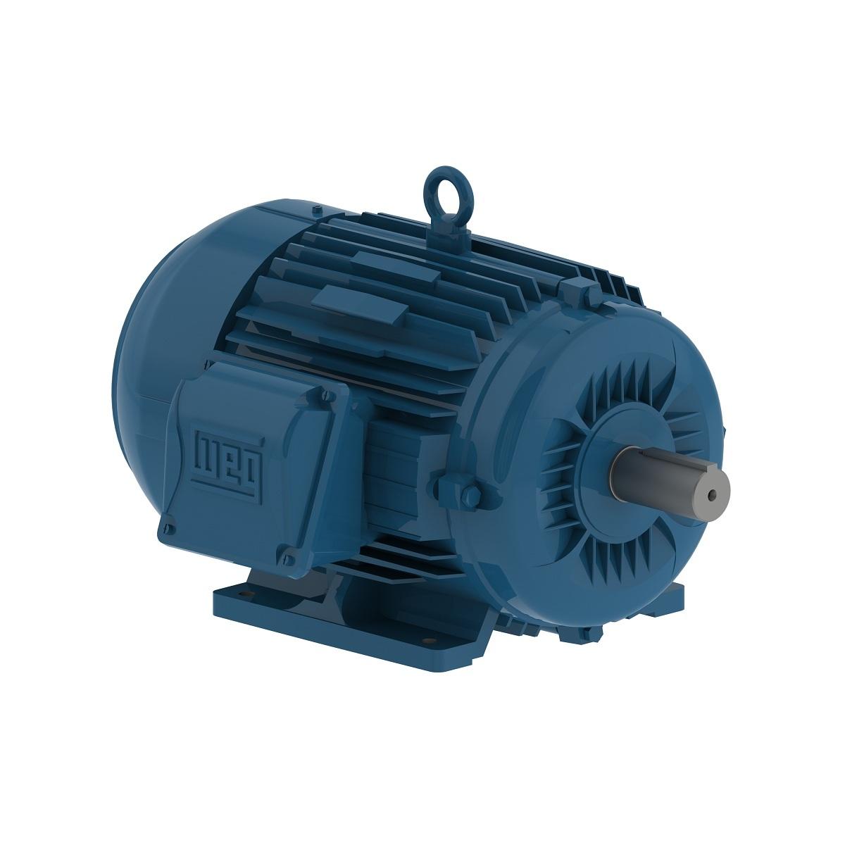 Motor Trifásico Baixa Rotação 10CV 4P 380/660V W22 IR2 WEG