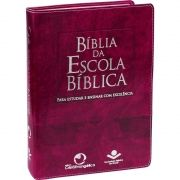 BÍBLIA DA ESCOLA DOMINICAL - PURPURA