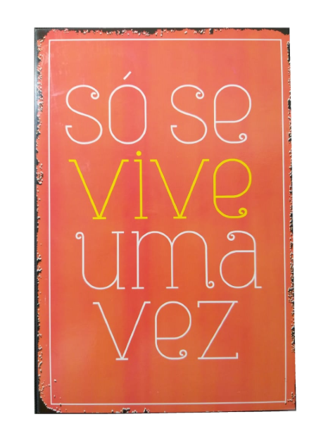Placa de Metal 20x30 Cm Frases