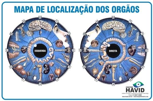Mapa A3 Localização dos Órgãos