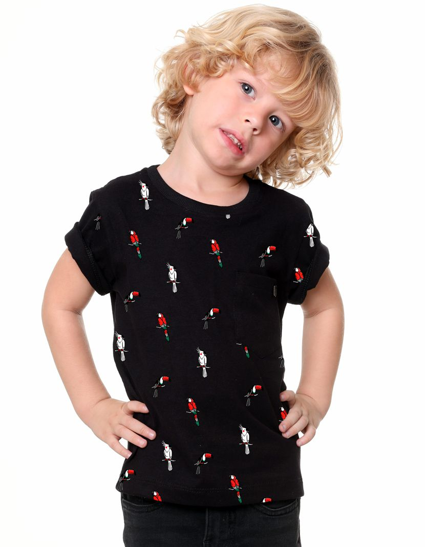 Camiseta Pássaros (Infantil Masculino)