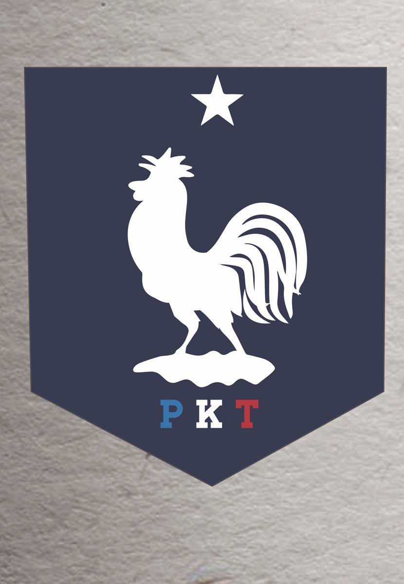 Camiseta PKT França (Infantil Masculino)