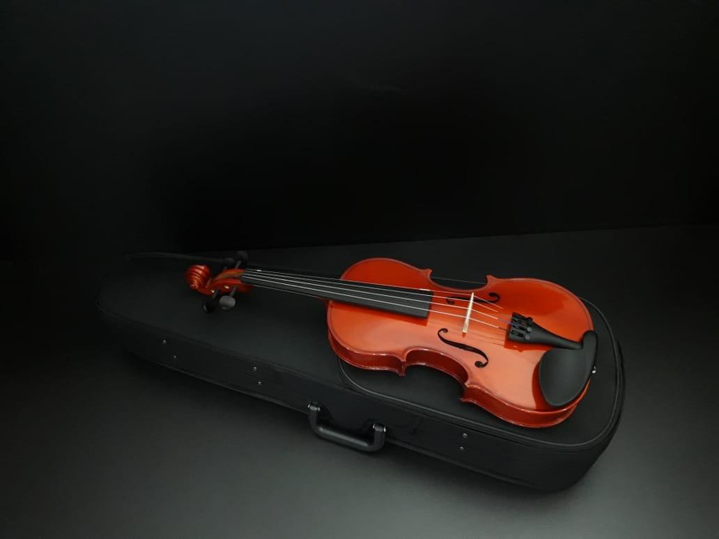 Violino Standard Maciço 1/16 - Blaver  - Scavone Instrumentos Musicais