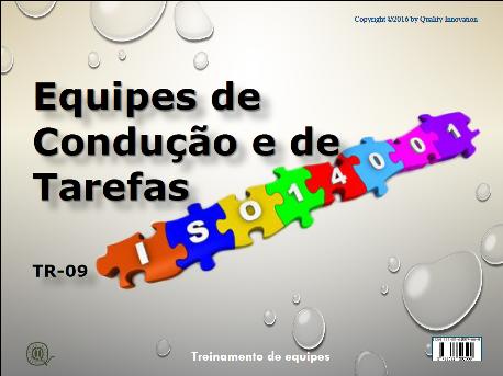 Equipes de Condução e Tarefas na ISO 14001  - www.qualistore.net.br