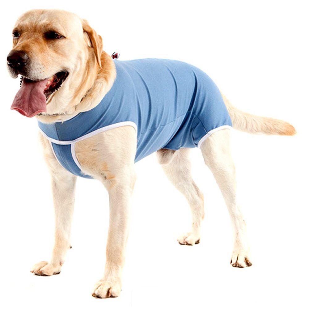 Roupa Pós-Cirúrgica Pet Med (Macho)