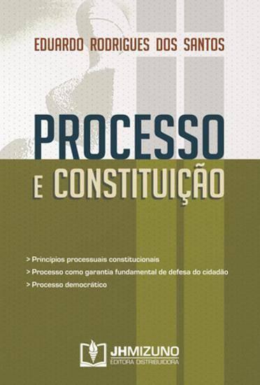 Processo e Constituição