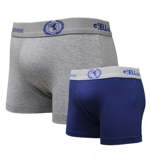 Boxer Viscolycra Mescla kit c/02 unidades