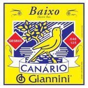 ENCORDOAMENTO PARA CONTRA BAIXO 5 CORDAS SÉRIE CANÁRIO - GESBX5 - GIANNINI