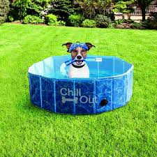 PISCINA PARA CÃES PEQUENO - CHILL OUT SPLASH AND FUN DOG POOL