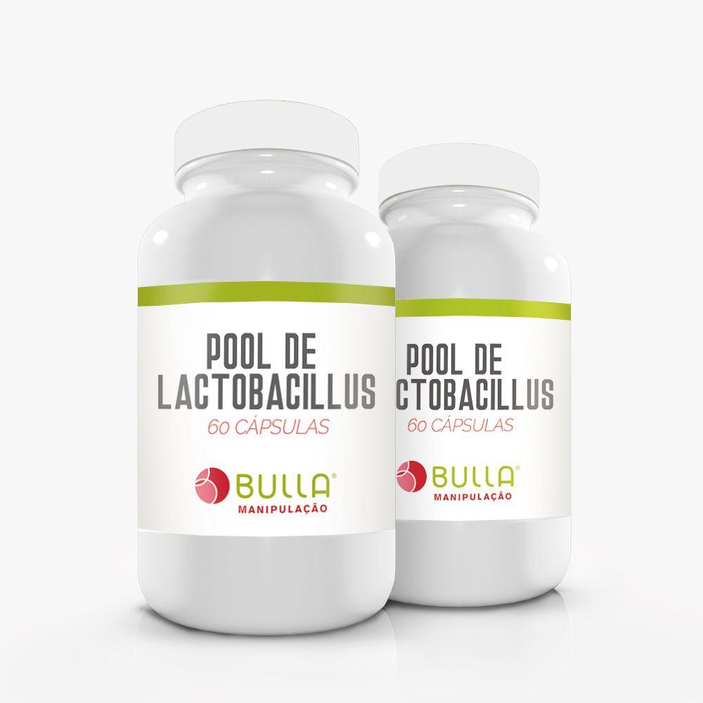 Pool de lactobacillus - 60 cápsulas