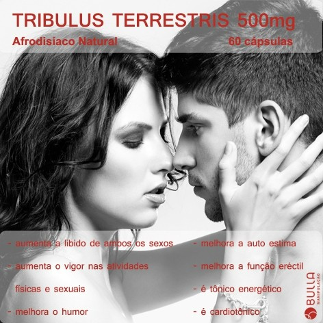 Tribulus terrestris 500mg 60 cápsulas   - Bulla Farmácia de Manipulação