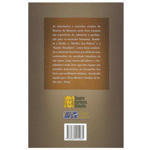 Livro - Bezerra de Menezes - Anotações de Servidor