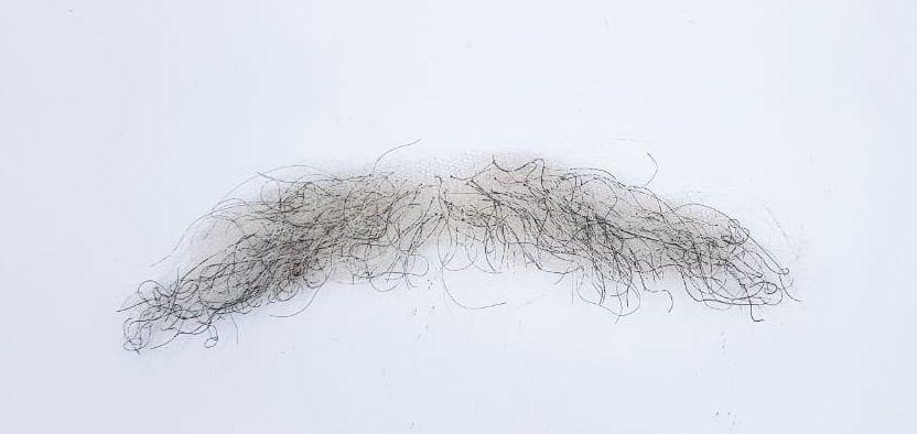 Bigode falso grisalho (fios brancos com pretos)