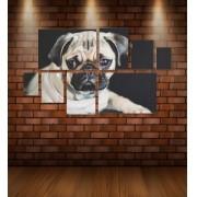 Quadro Placas Cachorro 01 - 8 peças