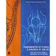 fundamentos de clínica e cirurgiade joelho