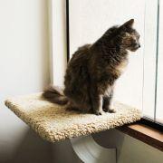 Prateleira de janela - Space Cat Bege Lunar