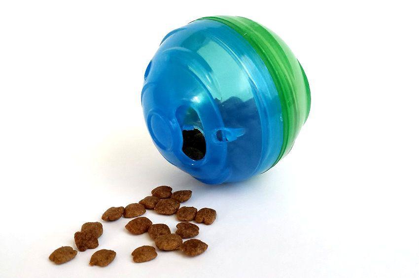 Mini Pet Ball
