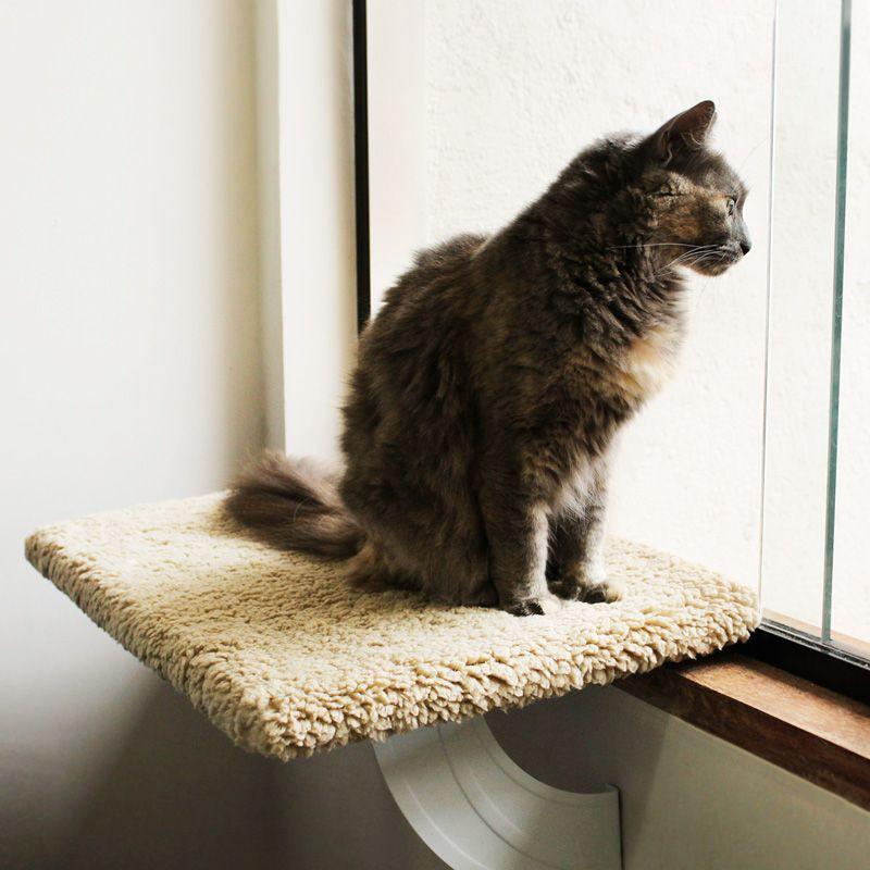Prateleira de janela - Space Cat