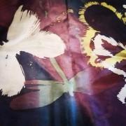 31/10 (terça feira) - BORBOLETAS E LIBÉLULAS